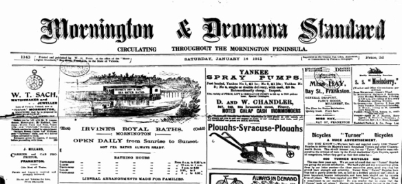 Mornington and Dromana Standard 1911