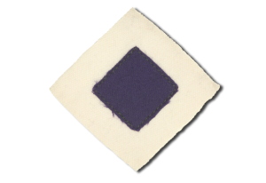 patch-of-2nd-pioneers