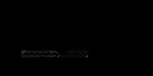 flotsm logo